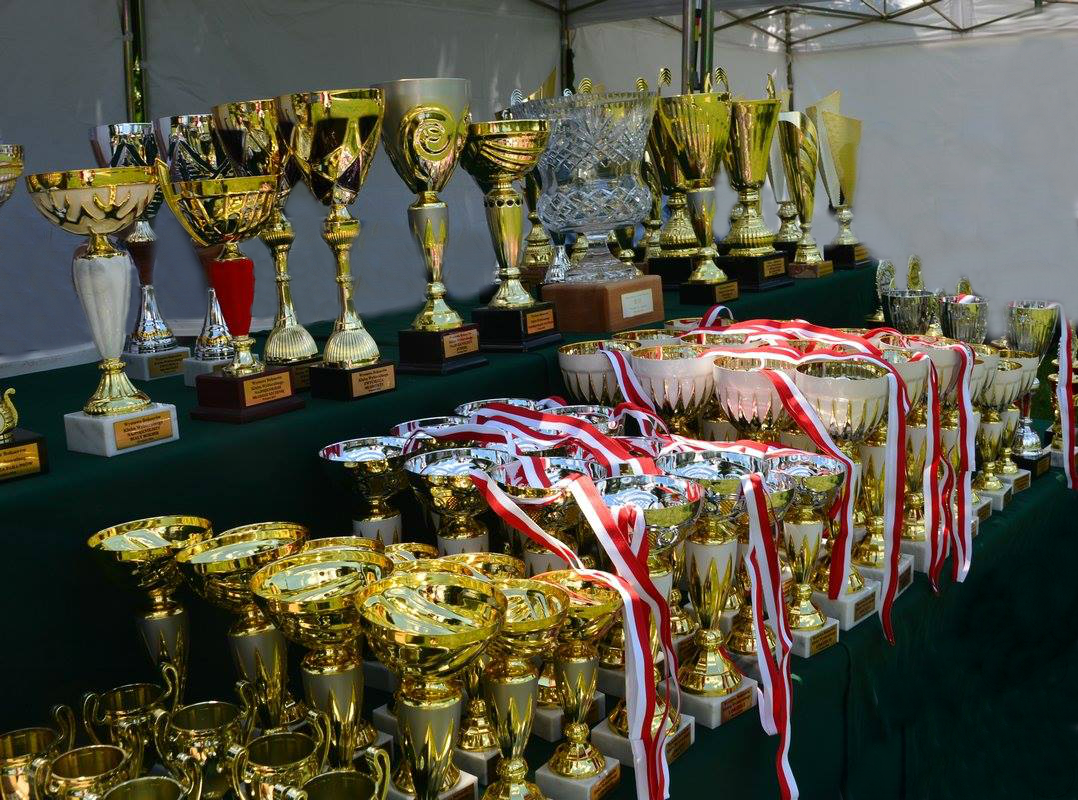 Champions and awards